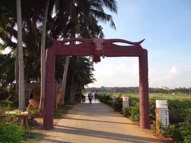 海南公布首批美丽乡村名单,琼海有5大村获评!